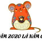 Giải đáp câu hỏi về năm 2020 là năm gì mệnh gì?